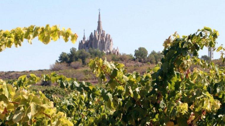 Llocs, cultura, rutes i gastronomia per descobrir Tarragona. La guia definitiva per visitar i conèixer Tarragona.