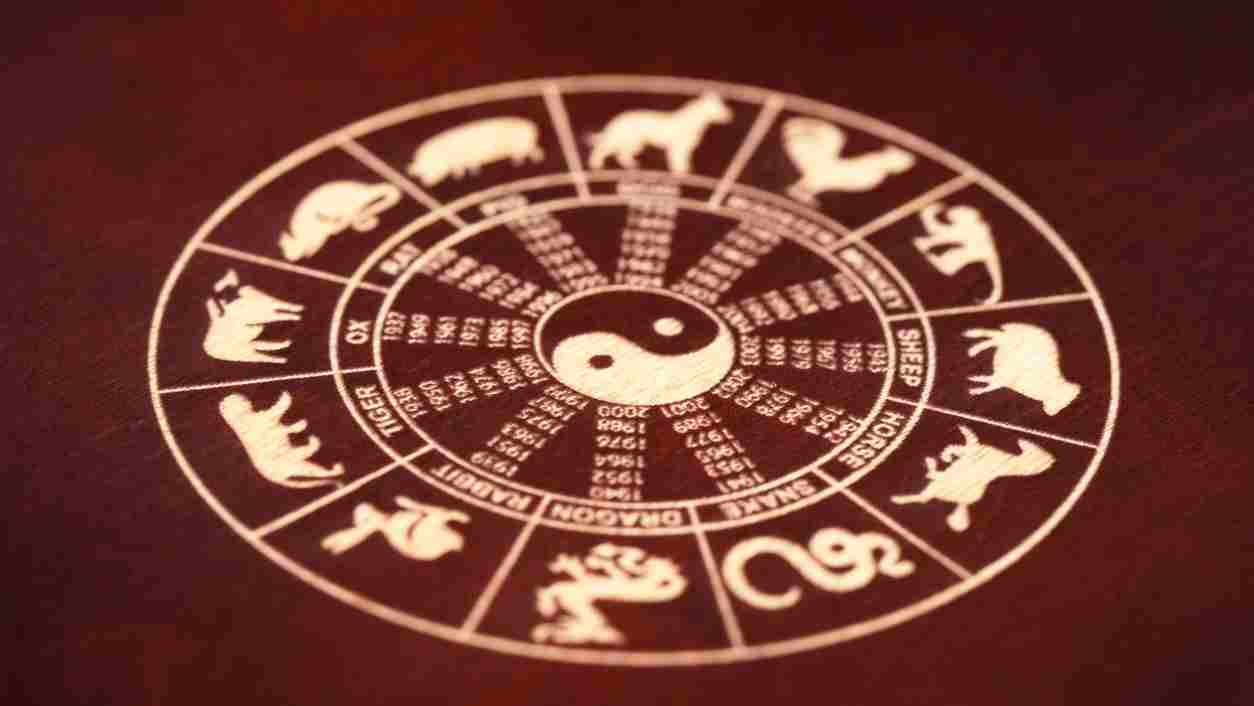 The chinese zodiac signs in a circle and the ying yang in the middle