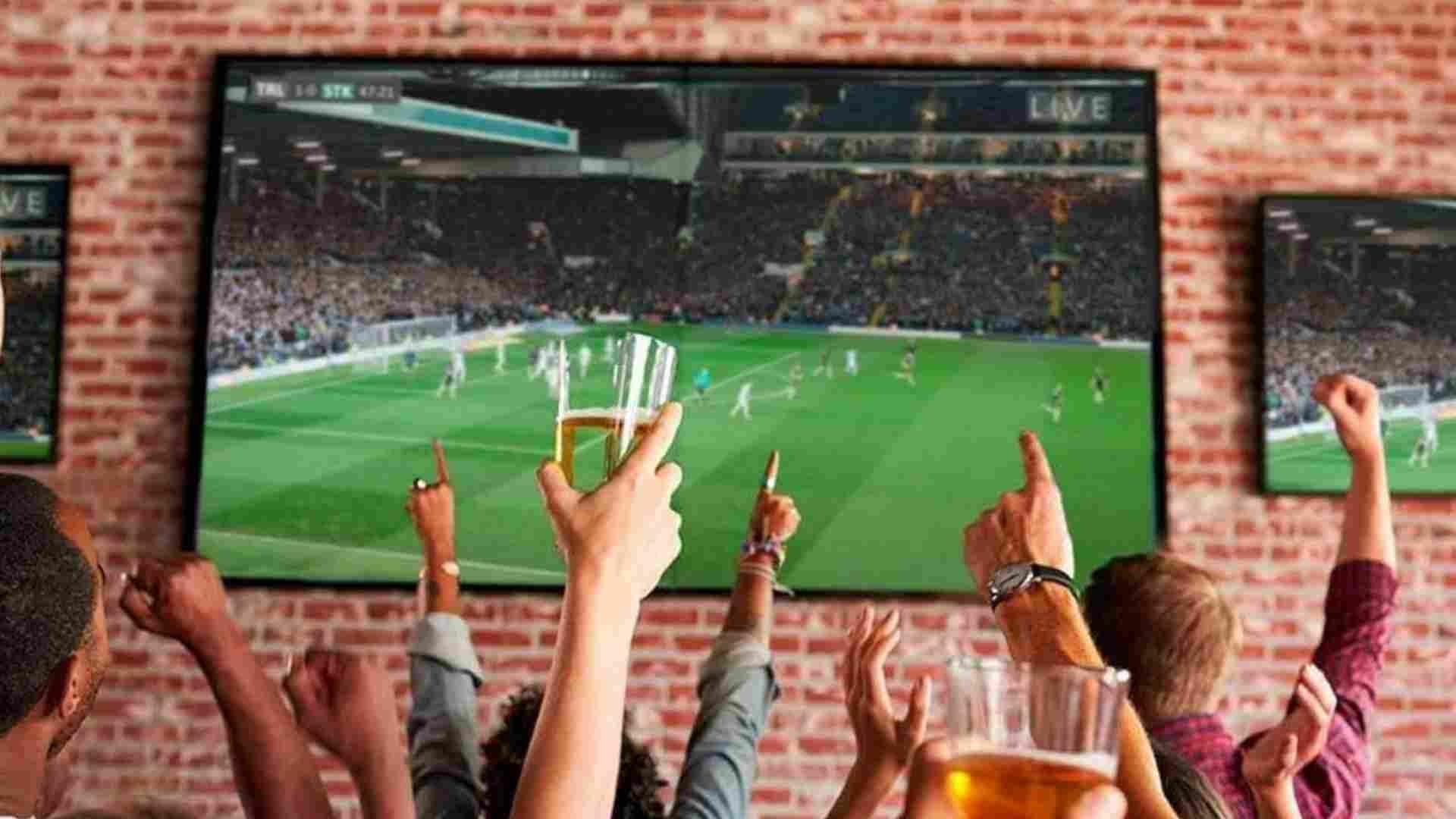 Un grupo de aficionados durante un partido de futbol